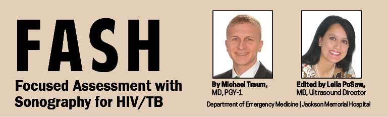 Fash: Focused Assessment with Sonography for HIV/TB. Michael Traum and Leila PoSaw